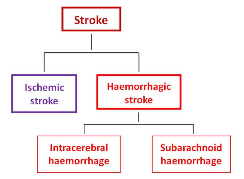 role of neuroinflammation in ischemic stroke