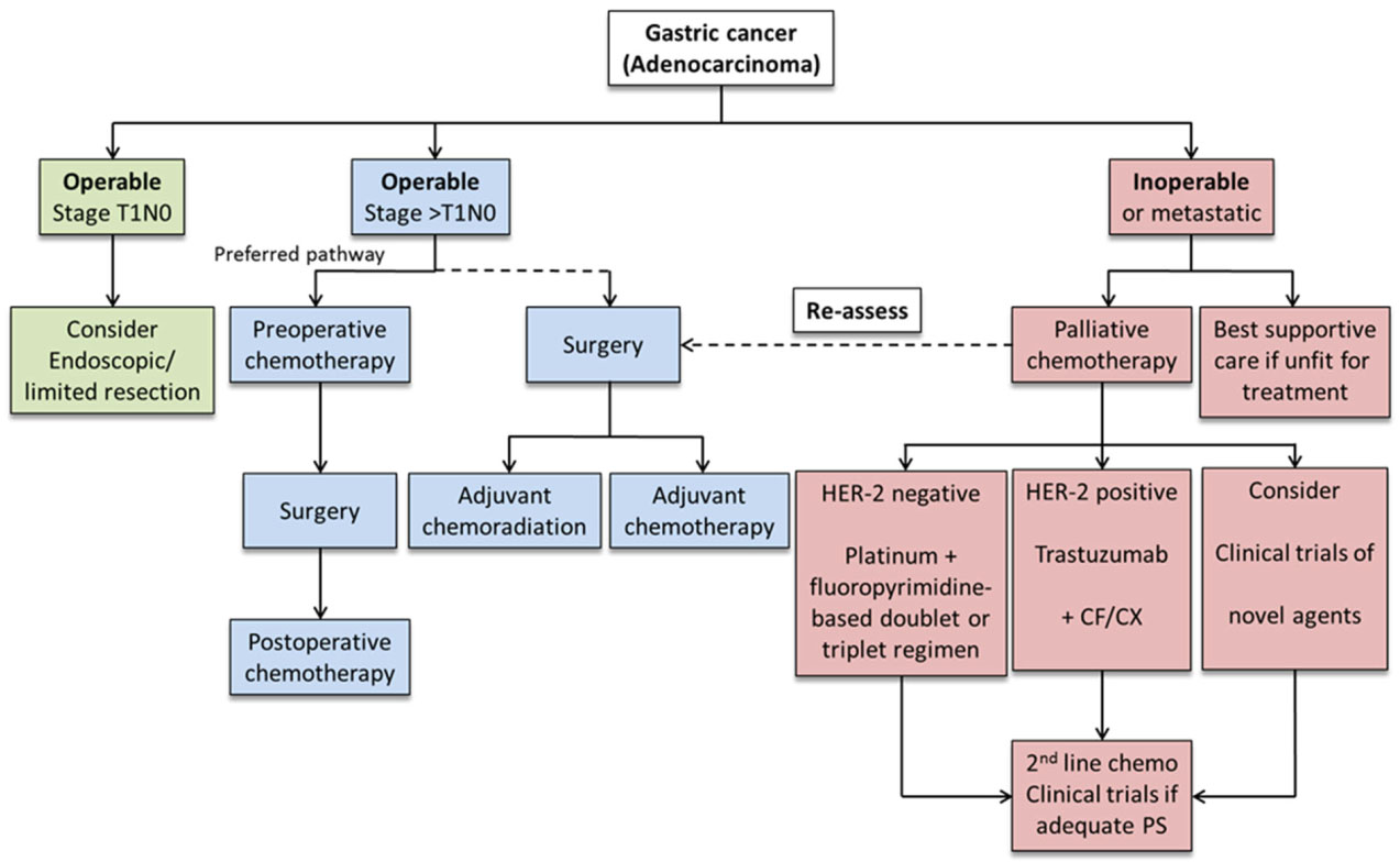 Current trends in gastric cancer treatment in Europe