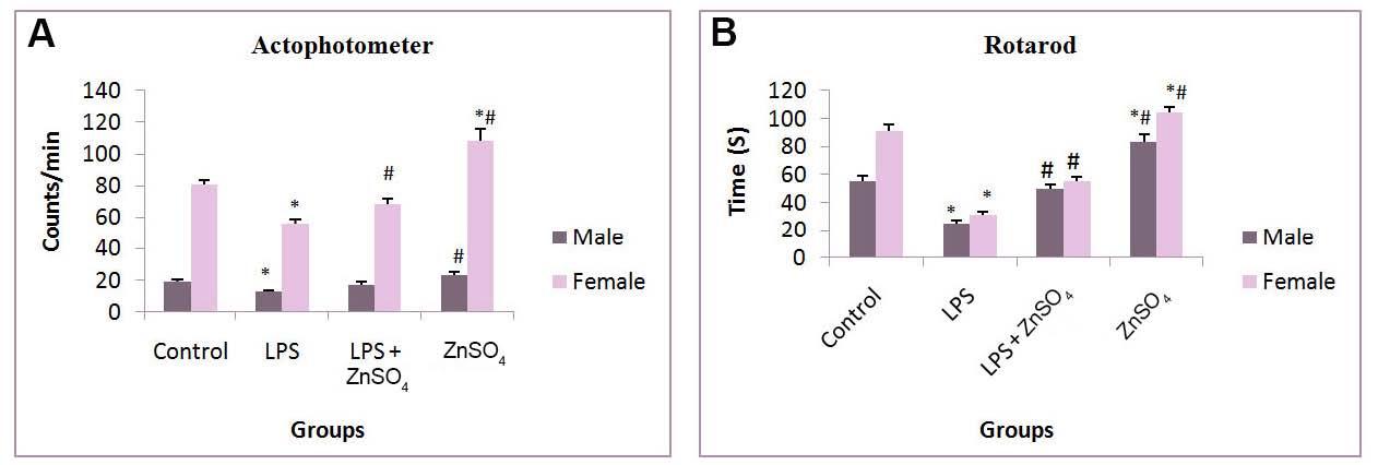 Prenatal zinc supplementation to lipopolysaccharide infected