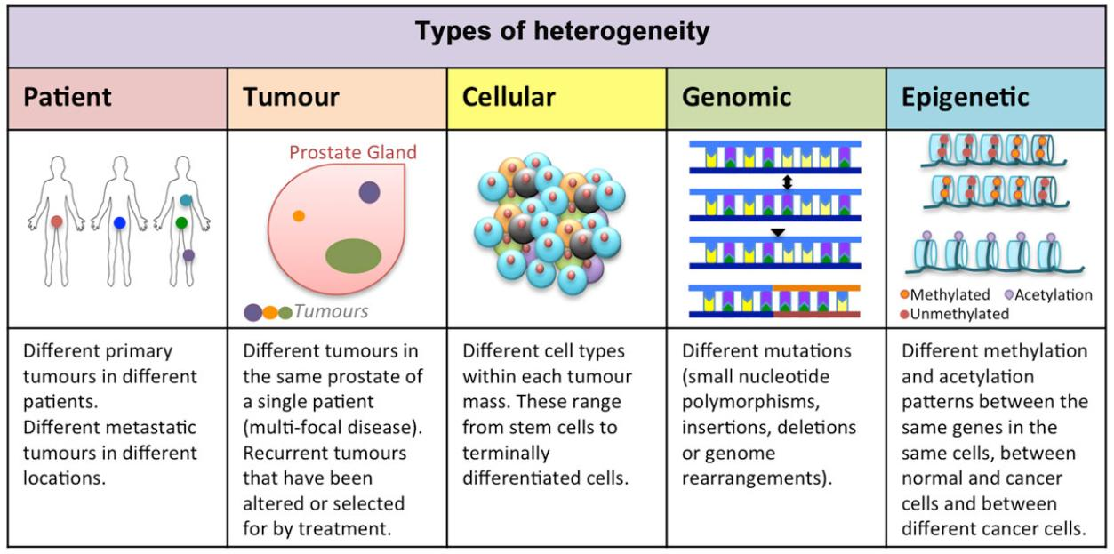 Tumor heterogeneity and therapy resistance - implications